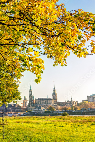 Türaufkleber Gelb Historic old town of Dresden in autumn with colorful trees and leaves