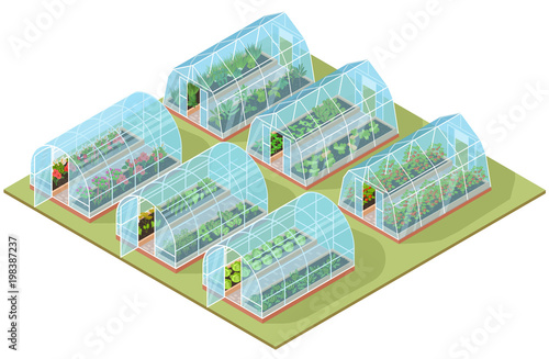 Canvas Print Set of isometric glass greenhouse with growing vegetables and colorful flowers