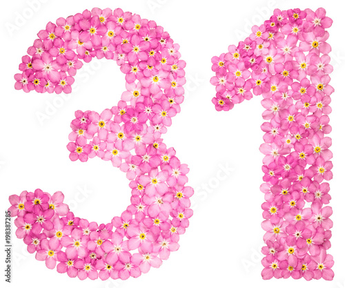 Arabic numeral 31 thirty one from pink forget me not flowers arabic numeral 31 thirty one from pink forget me not flowers mightylinksfo