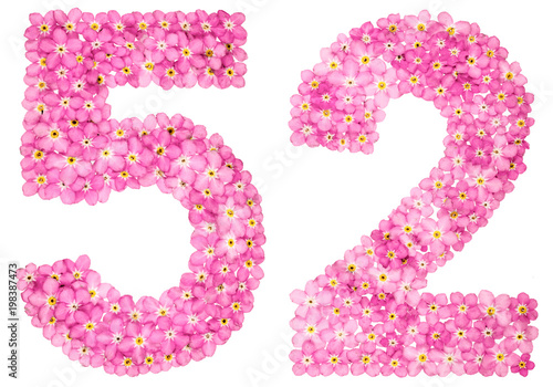 Poster  Arabic numeral 52, fifty two, from pink forget-me-not flowers, isolated on white