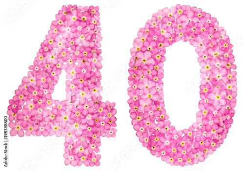 Poster  Arabic numeral 40, forty, from pink forget-me-not flowers, isolated on white bac