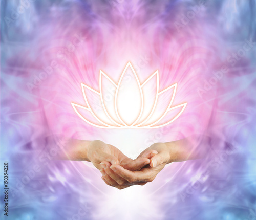 The Sacred Lotus - female cupped hands with an illuminated lotus flower symbol floating above on a pink purple blue and white energy background