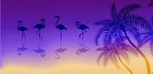 Flamingo Birds And Tropical Pa...