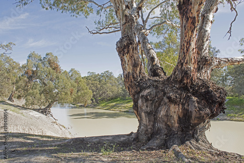 Foto auf Gartenposter Fluss The Darling river in the far west of New South Wales.The third longest river in Australia.