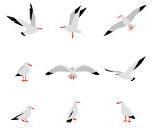 Seabirds. Set Of Beautiful Seagulls In A Flat Style Isolated On White Background. Vector Set Of Beautiful Seagulls.