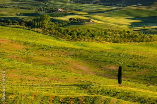 Staande foto Pistache Tuscany spring landscape