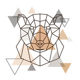 Abstract geometric head of grizzly. Wild animal. Vector illustration. - 198486226