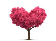 Pink Tree In Heart Shape
