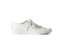 White Lace Unisex Sneaker Sports Footwear Isolated White Background
