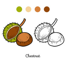 Coloring Book, Chestnut