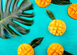 canvas print picture - Creative layout made of summer tropical fruits mango and tropical leaves on turquoise background. Flat lay. Food concept. Tropical concept
