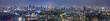 東京の夜景(パノラマ)