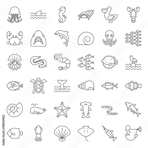 Aquatic Ocean life such as octopus, shell, pelican,herd of fish, outline icon set Wall mural