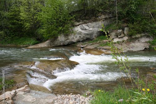 Fototapeten Forest river river