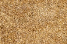 Seamless Texture Hay, Straw