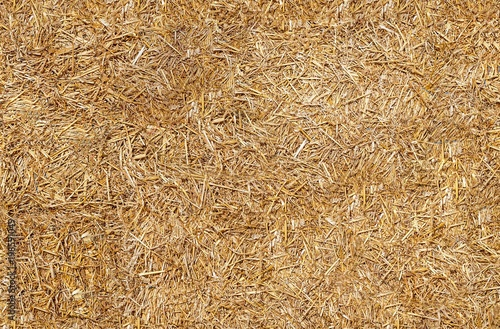 Seamless texture hay, straw Wallpaper Mural