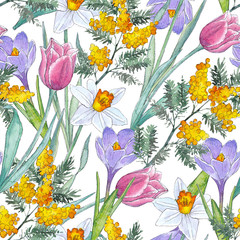 FototapetaWatercolor hand-drawn texture (pattern) with spring flowers on white background