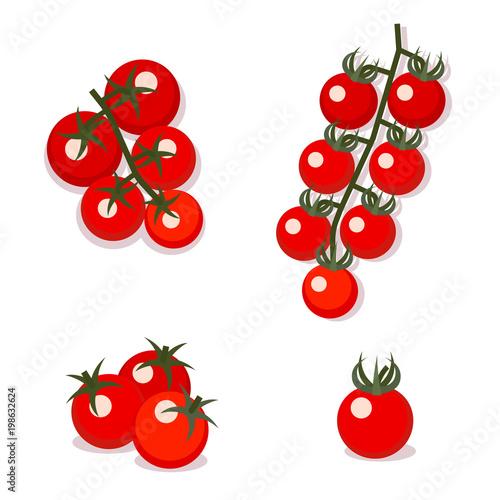 Cherry tomatoes, vector illustration. Flat style.