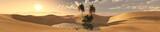 oasis in the desert of sand, panorama of the desert 3D rendering