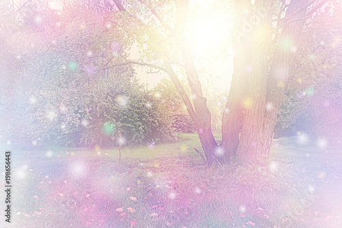 Fototapeta Spirit Orbs gathered around tree emitting golden white light - tree with etherea