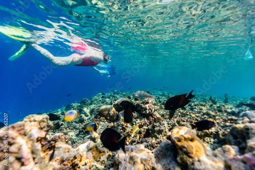 In de dag Koraalriffen Woman snorkeling