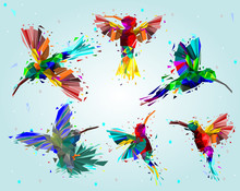 Pattern With Low Poly Colorful Hummingbird With Rainbow Back Ground,animal Geometric,party Birds Concept,vector.