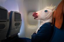 Unusual Passenger In Elegant S...