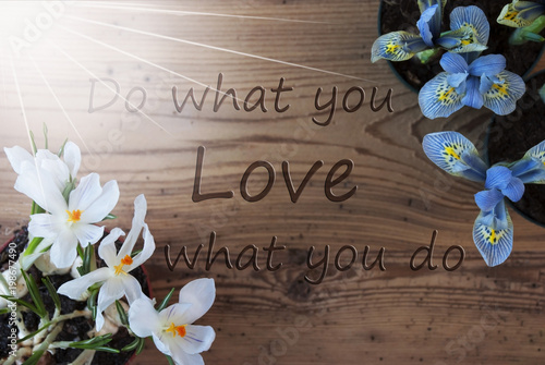 Sunny Crocus And Hyacinth, Quote Do What You Love Poster