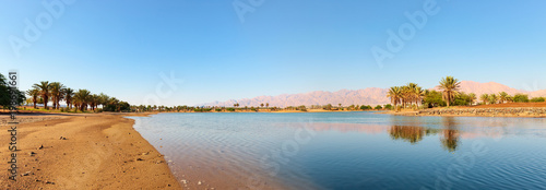 Panoramic view of idyllic oasis in the south of Israel. Fototapeta