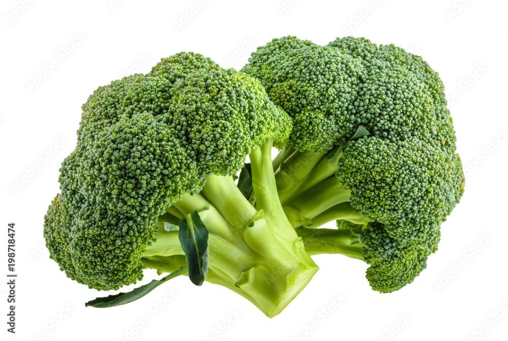 Fototapeta broccoli isolated on white without shadow