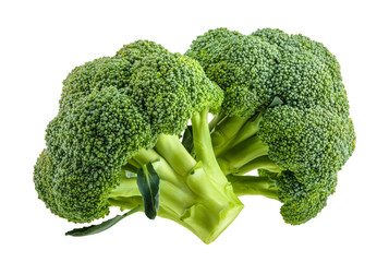 broccoli isolated on white without shadow