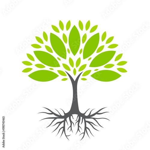 Obraz Ekologiczne drzewo ilustracja wektorowa - fototapety do salonu