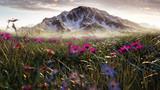 Fototapeta  - Blumenwiese im Gebirge