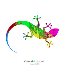 Color Splat Animals - Lizard