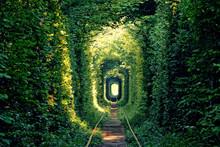 Tunnel Of Love Near Klevan, Uk...
