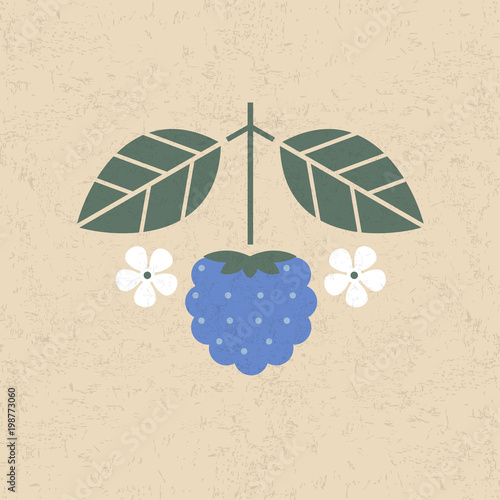 Fotografija  Dewberry illustration