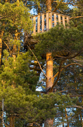 Foto  the attraction in the trees with suspended tracks with safety equipment and a ra