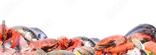 Valokuva  Seafood on a white background
