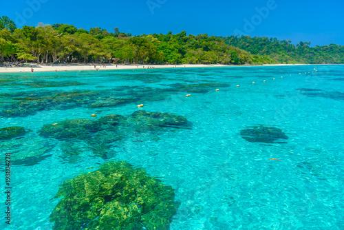 Fototapeta Rok island,beautiful nature island in Thailand Krabi obraz