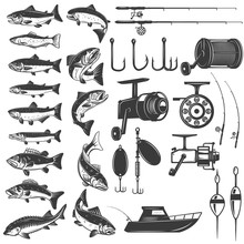 Set Of Fishing Icons. Fish Ico...