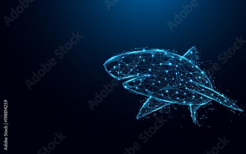 Fototapeta premium Streszczenie rekin tworzą linie i trójkąty, punkt łączący sieć na niebieskim tle. Ilustracji wektorowych