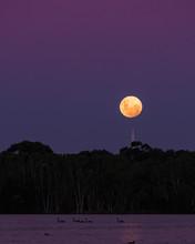 Moonrise Over Lake Monger