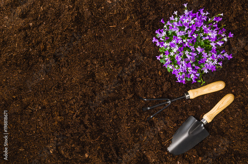 Cadres-photo bureau Jardin Gardening tools on fertile soil texture background seen from above, top view. Gardening or planting concept. Working in the spring garden.