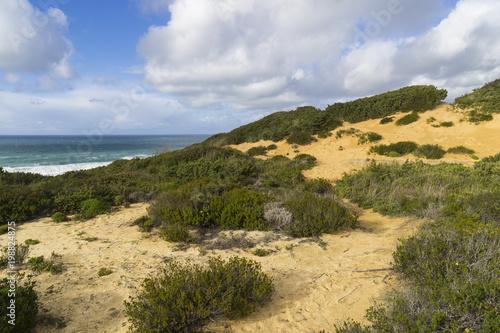 Keuken foto achterwand Noordzee Felsküste am Atlantik im Parque Natural do Sudoeste Alentejano e Costa Vicentina, Algarve, Portugal, Europa