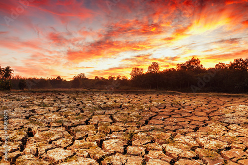 Foto op Canvas Australië Concepts global warming problem resolution with over cracks soil during the dry season no water