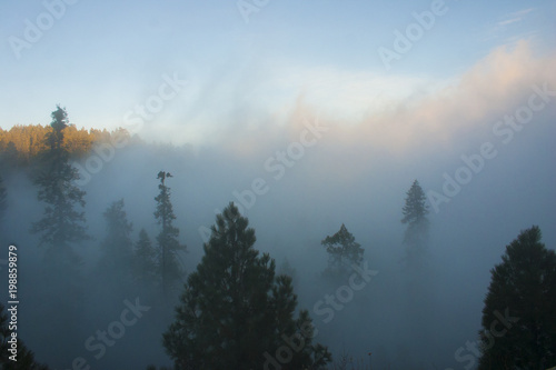 Poster Morning with fog In the clouds on top of the mountain. The Sierra Nevada is a mountain range in the Western United States.