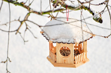Snow-covered Bird House With B...