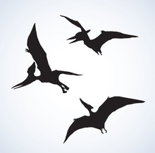 Pterodactyl. Vector Drawing