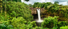A Panoramic View Of A Lush Tro...