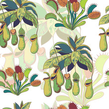 Seamless Background With Carnivorous Plants, Nepenthes And Venus Flytrap